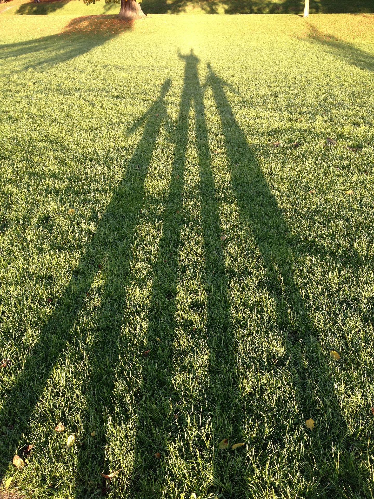 shadows-265295_1920