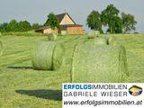 lg-bh-grasballen-160120w580